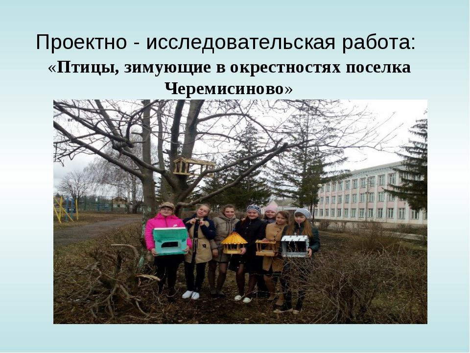 Проектно - исследовательская работа: «Птицы, зимующие в окрестностях поселка...