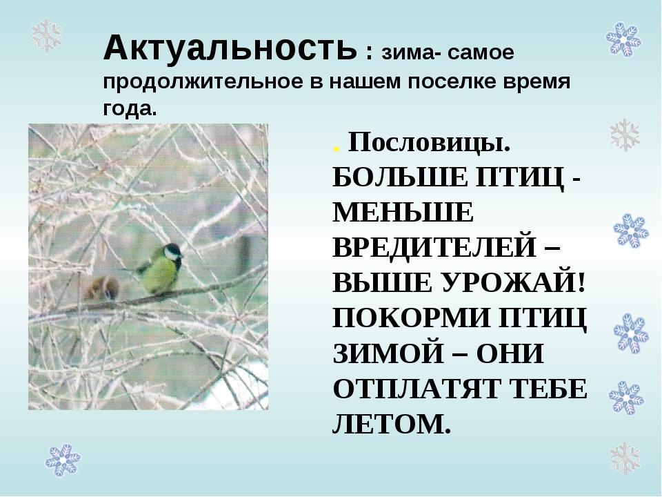 Актуальность : зима- самое продолжительное в нашем поселке время года. . Посл...