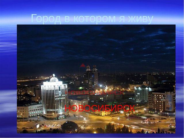 Город в котором я живу НОВОСИБИРСК