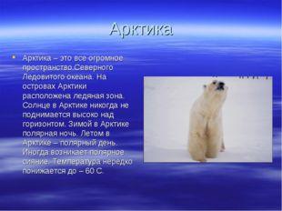 Арктика Арктика – это все огромное пространство Северного Ледовитого океана.