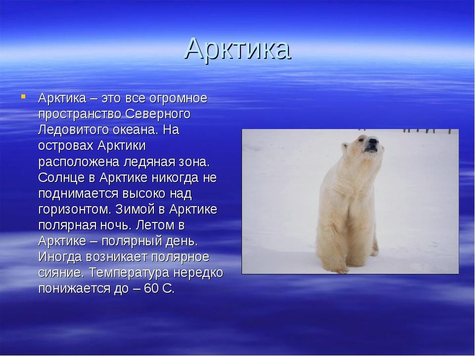 Арктика Арктика – это все огромное пространство Северного Ледовитого океана....
