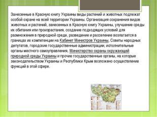 Занесенные в Красную книгу Украины виды растений и животных подлежат особой о