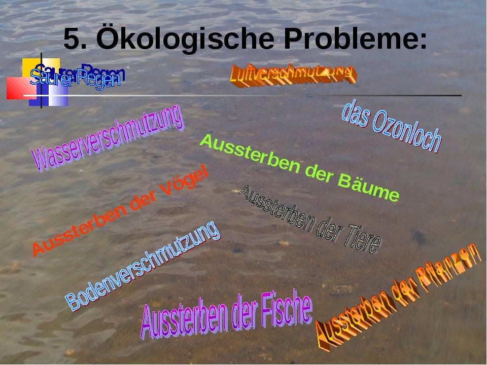5. Ökologische Probleme: Aussterben der Bäume Aussterben der Vögel
