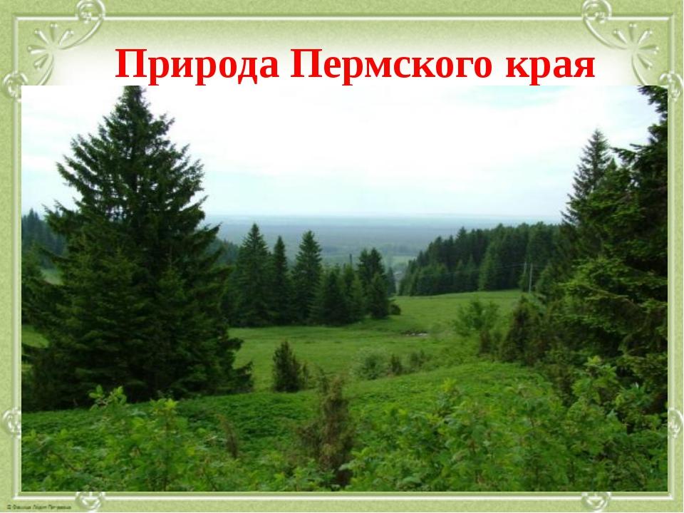 Природа Пермского края
