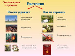 Растения Что им угрожает Как их охранять Промышленные предприятия Вырубка лес