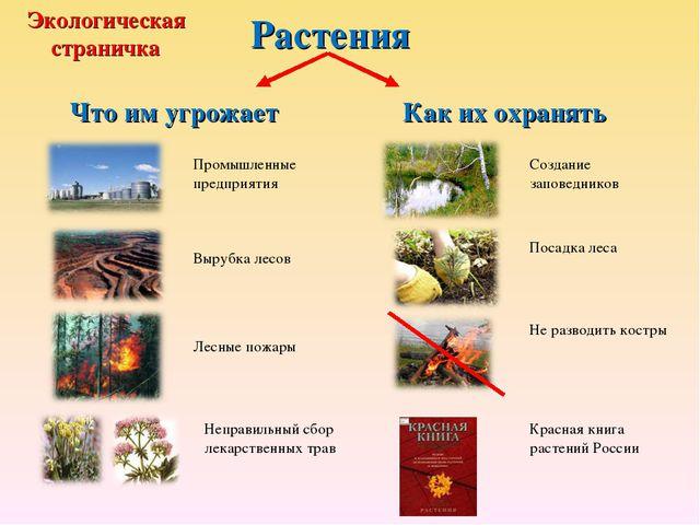 Растения Что им угрожает Как их охранять Промышленные предприятия Вырубка лес...