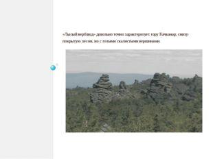 «Лысый верблюд» довольно точно характеризует гору Качканар, снизу- покрытую