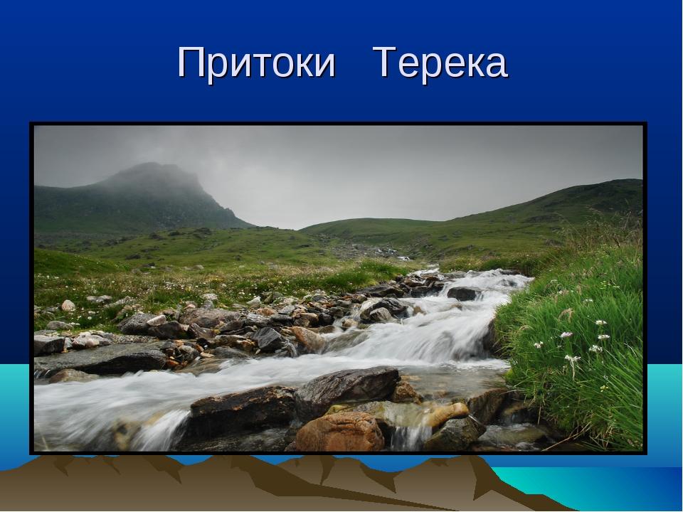 Притоки Терека
