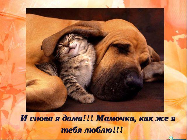 И снова я дома!!! Мамочка, как же я тебя люблю!!!