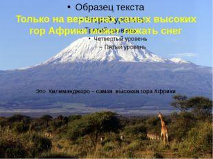 Только на вершинах самых высоких гор Африки может лежать снег Это Килиманджар
