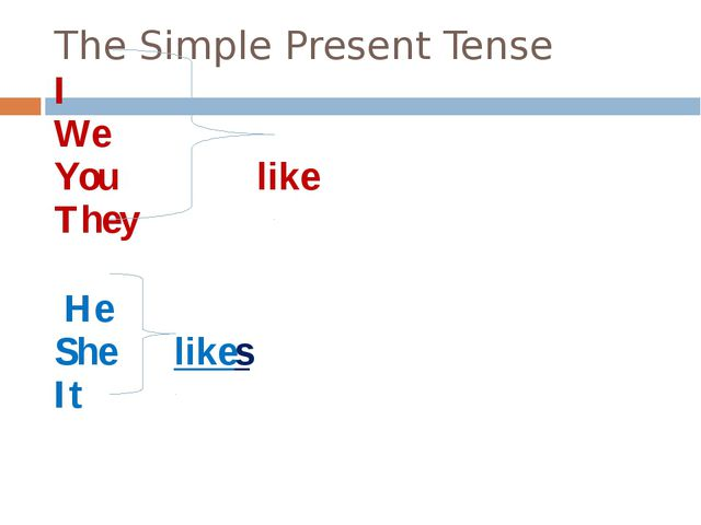 The Simple Present Tense I We You like They He She likes It