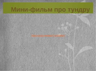 Мини-фильм про тундру https://youtu.be/paACvmEs6Kw