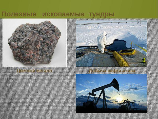 Полезные ископаемые тундры Цветной металл Добыча нефти и газа
