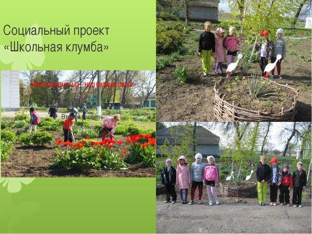 Социальный проект «Школьная клумба»