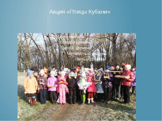 Акция «Птицы Кубани»