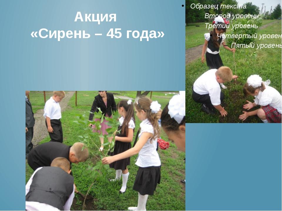 Акция «Сирень – 45 года»