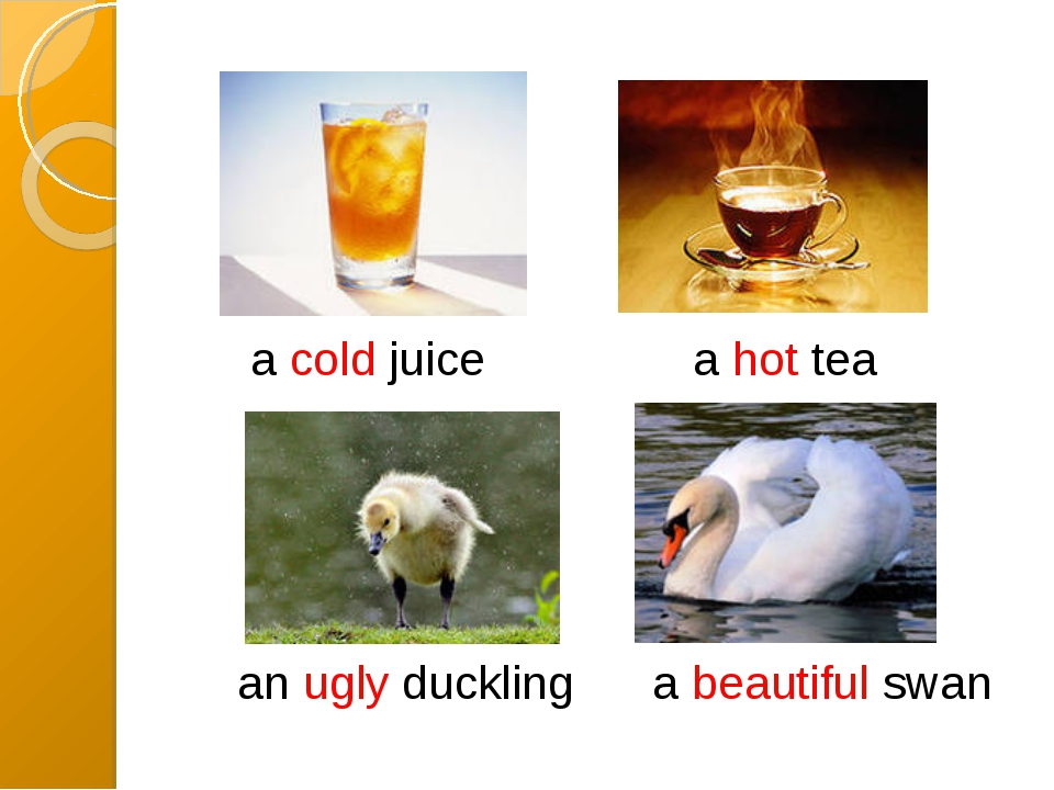 a cold juice a hot tea an ugly duckling a beautiful swan