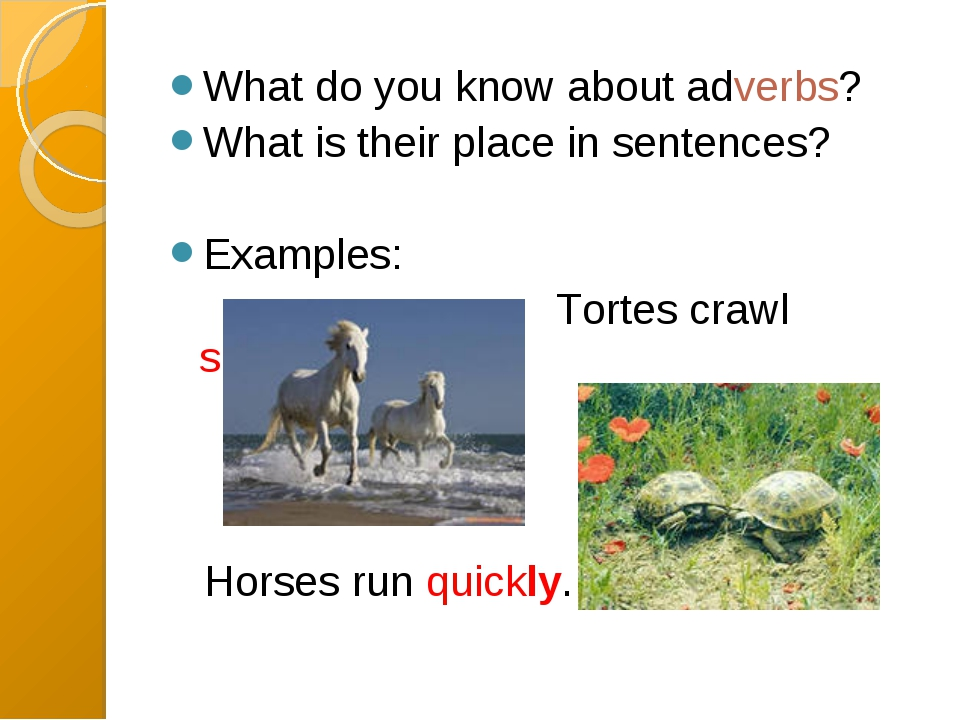 What do you know about adverbs? What is their place in sentences? Examples:...