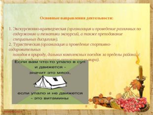 Основные направления деятельности: 1. Экскурсионно-краеведческая (организаци