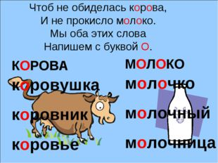 Чтоб не обиделась корова, И не прокисло молоко. Мы оба этих слова Напишем с