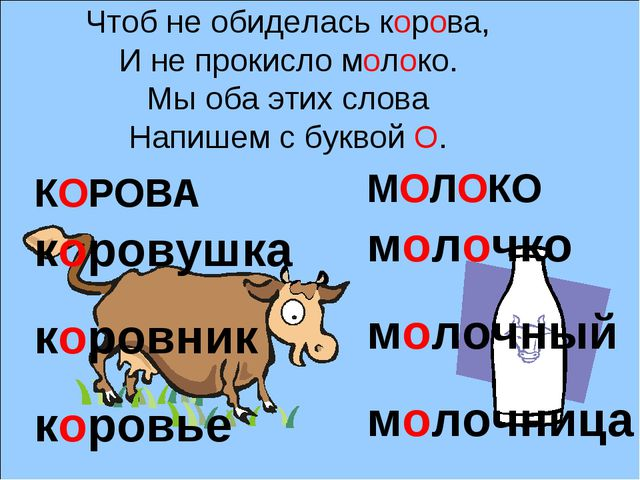 Чтоб не обиделась корова, И не прокисло молоко. Мы оба этих слова Напишем с...