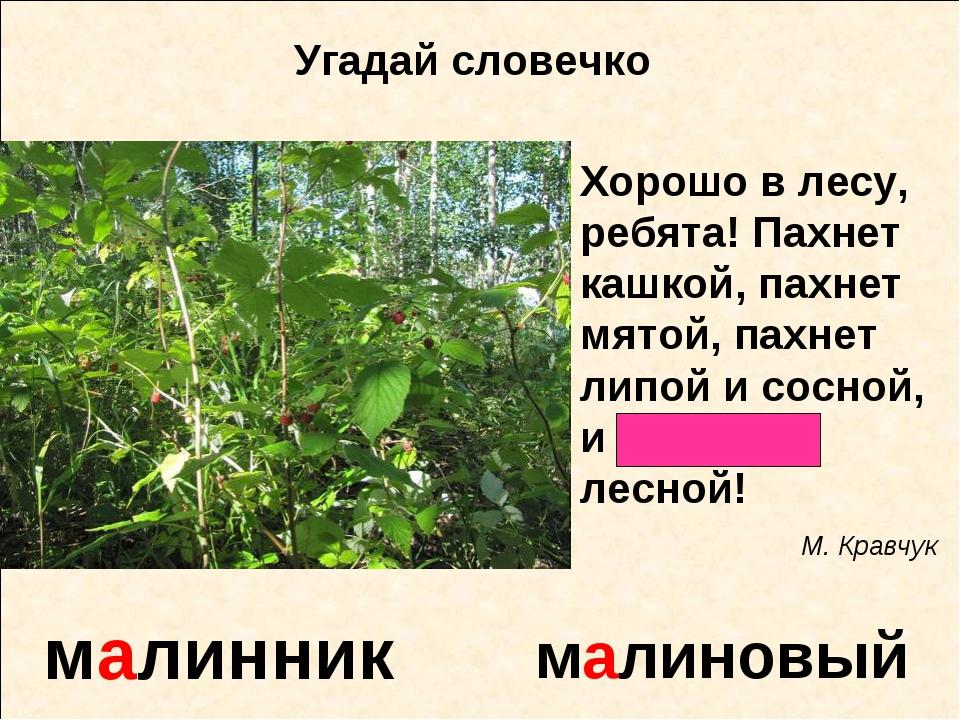 малинник малиновый Угадай словечко малина Хорошо в лесу, ребята! Пахнет кашко...