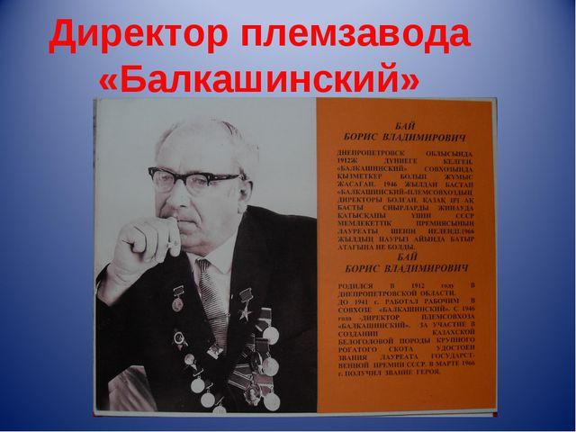 Директор племзавода «Балкашинский»