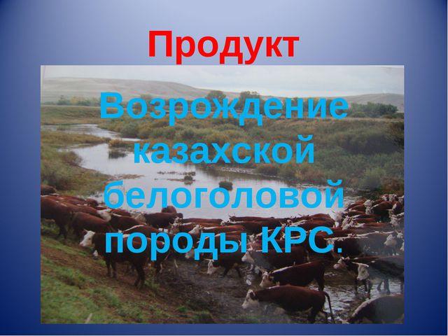 Продукт Возрождение казахской белоголовой породы КРС.