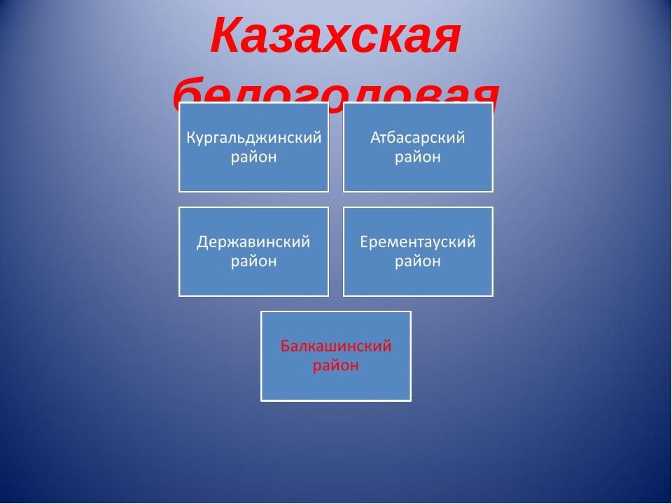 Казахская белоголовая