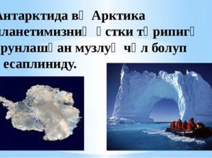Антарктида вә Арктика планетимизниң үстки тәрипигә орунлашқан музлуқ чөл болу