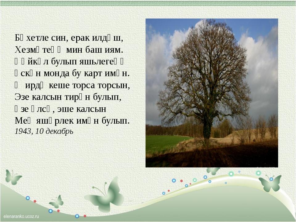 Бәхетле син, ерак илдәш, Хезмәтеңә мин баш иям. Һәйкәл булып яшьлегеңә Үск...