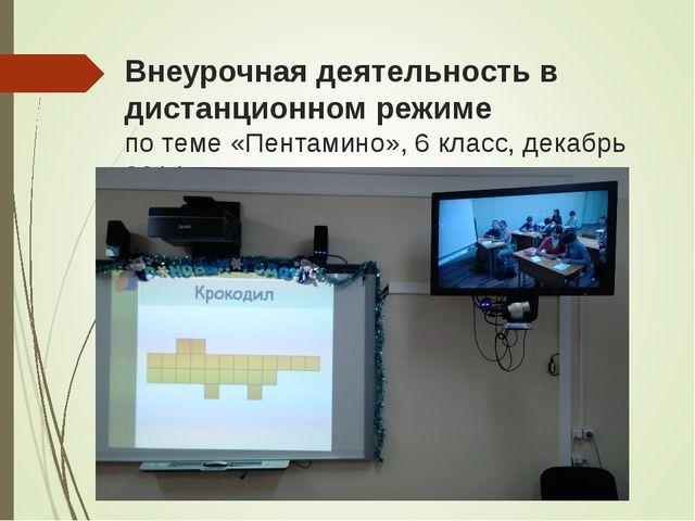 Внеурочная деятельность в дистанционном режиме по теме «Пентамино», 6 класс,...