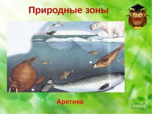 Органы чувств человека Нос Какой орган чувств отвечает за обоняние? Ekaterina