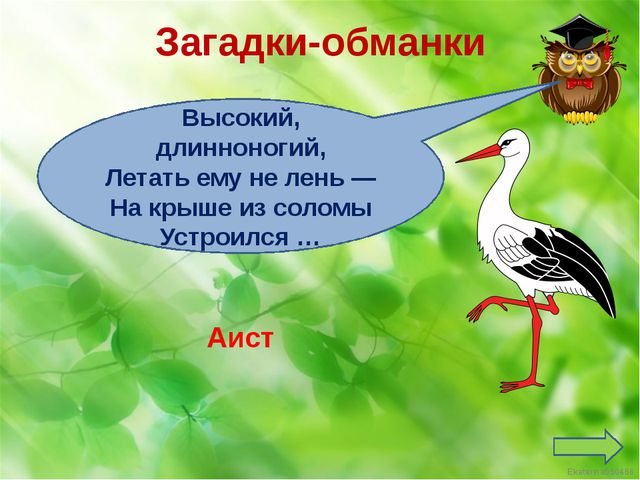 Загадки-обманки Высокий, длинноногий, Летать ему не лень — На крыше из соломы...