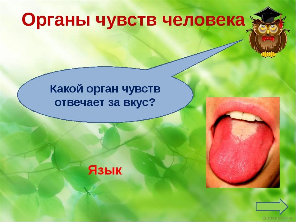 Реки России Волга Назови великую реку России Ekaterina050466