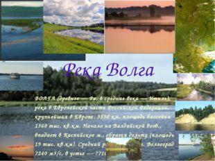 Река Волга ВОЛГА (древнее — Ра, в средние века — Итиль), река в Европейской ч