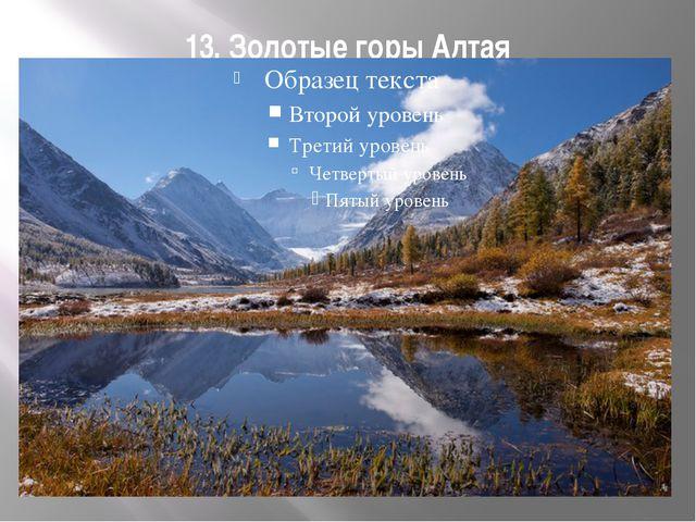 13. Золотые горы Алтая
