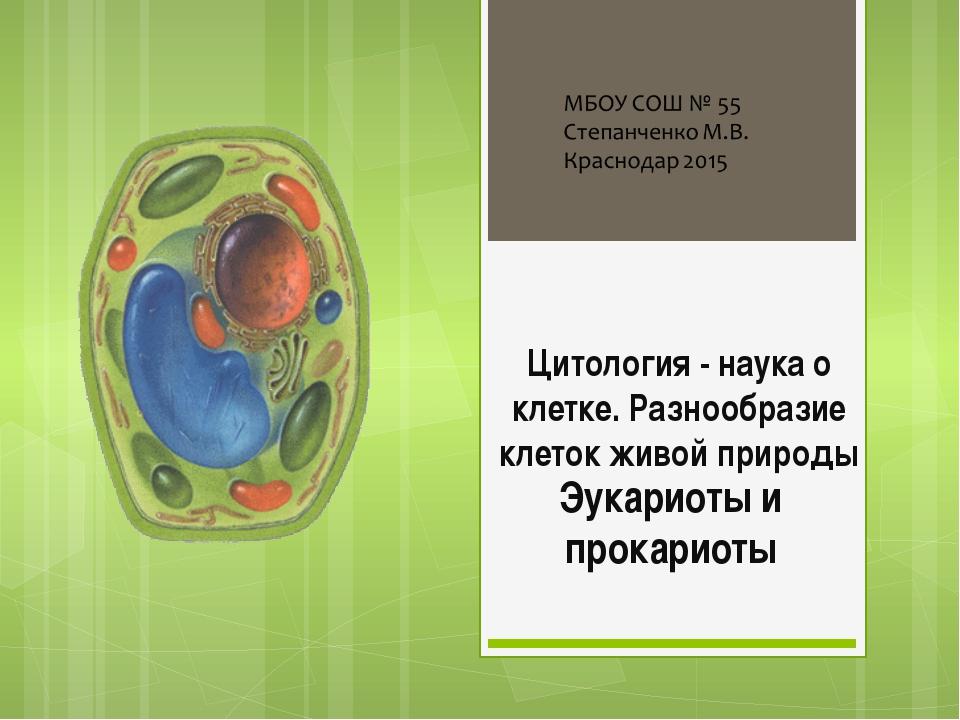 Цитология - наука о клетке. Разнообразие клеток живой природы Эукариоты и про...