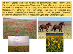 На юге Русской равнины привольно раскинулись край Тихого Дона. Ранее эти мест
