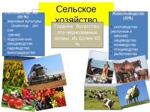 Сельское хозяйство Животноводство (40%) скотоводство (молочное и мясное) овце