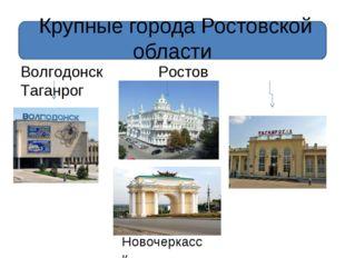 Крупные города Ростовской области Волгодонск Ростов Таганрог Новочеркасск