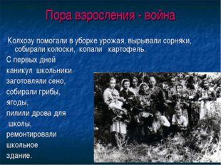 Пора взросления - война Колхозу помогали в уборке урожая, вырывали сорняки, с