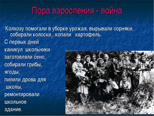 Пора взросления - война Колхозу помогали в уборке урожая, вырывали сорняки, с...