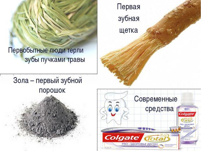 Первая зубная щетка Первобытные люди терли зубы пучками травы Зола – первый з...