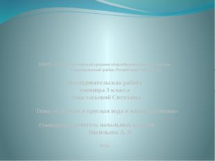 МБОУ «Русско-Акташская средняя общеобразовательная школа» Альметьевский район