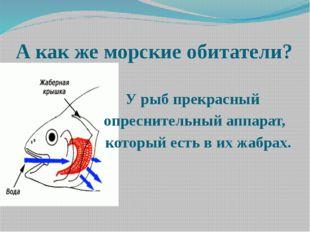 А как же морские обитатели? У рыб прекрасный опреснительный аппарат, который