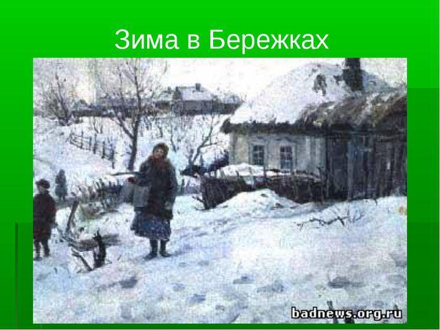 Зима в Бережках