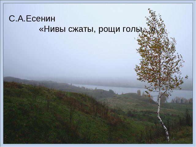 С.А.Есенин «Нивы сжаты, рощи голы…»