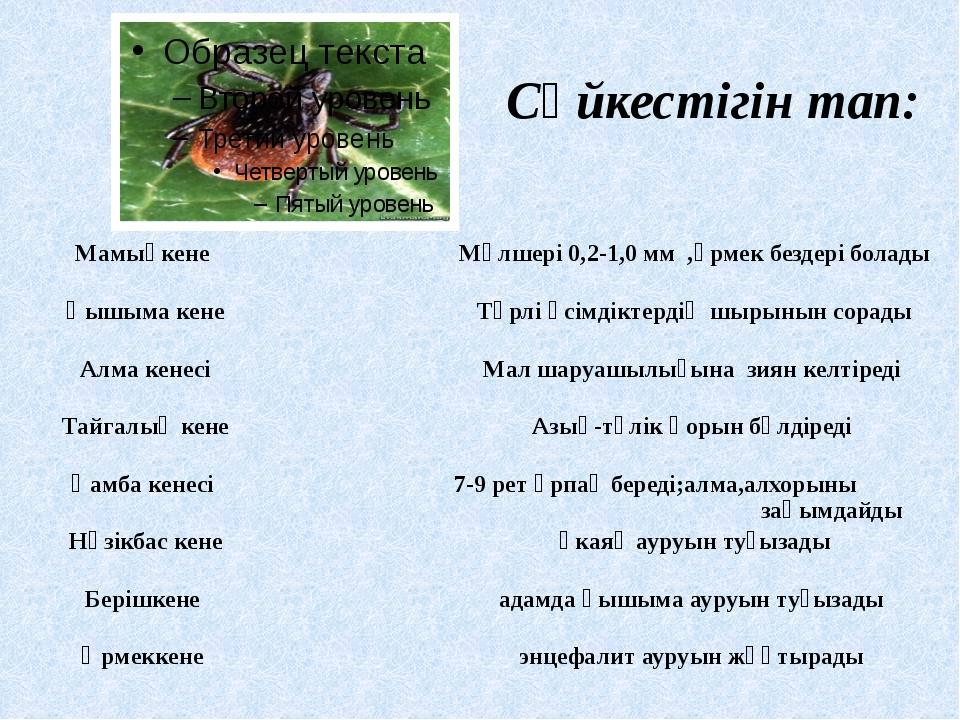 Сәйкестігін тап: Мамықкене Мөлшері 0,2-1,0 мм ,өрмек бездері болады Қышыма ке...