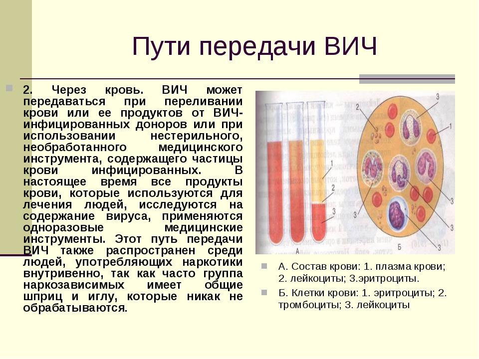 Пути передачи ВИЧ 2. Через кровь. ВИЧ может передаваться при переливании кро...
